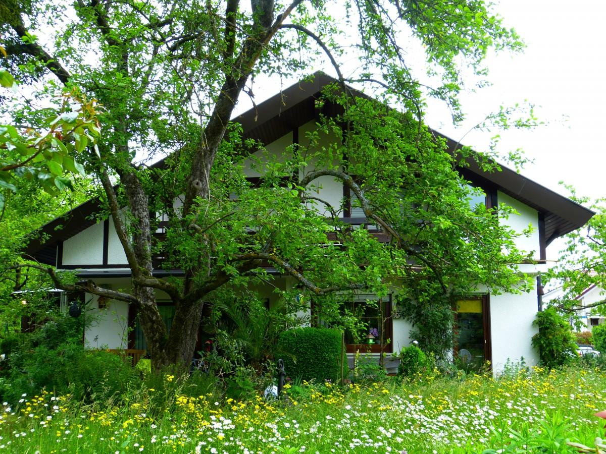 Comment augmenter la performance énergétique de votre logement ?